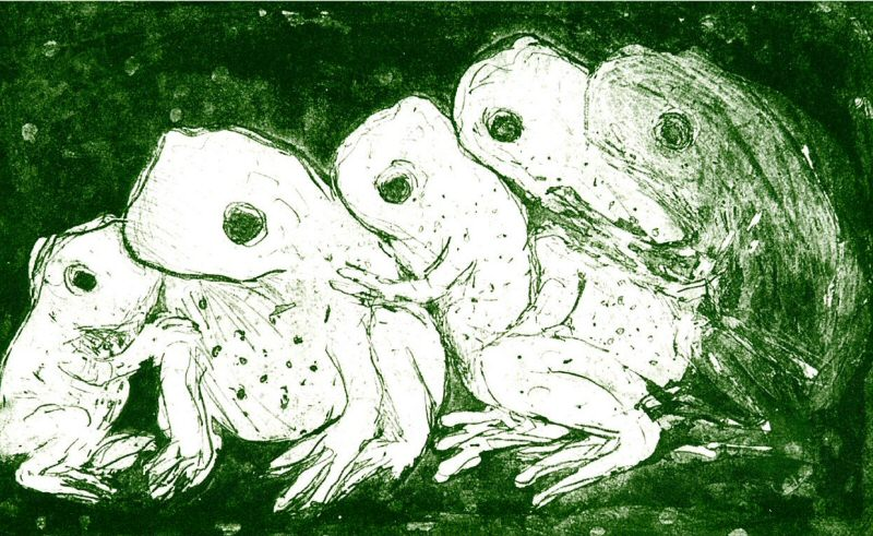 5 Frogs, 2002 Picture