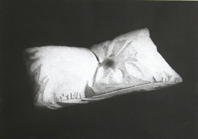 Dream Pillow  2008  Picture