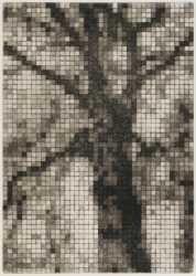Pixelated, 2010